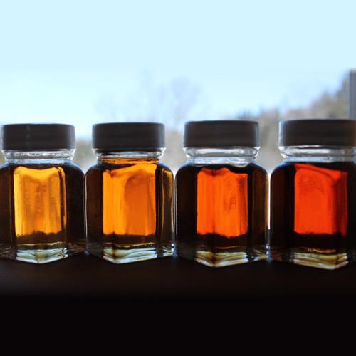 Syrup Grading Bottles