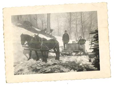 Horses pulling wagon and sap