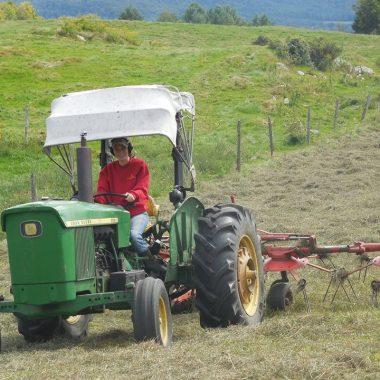 Laura Lambert on Tractor