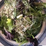 salad with maple dressing